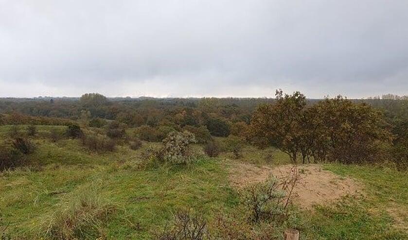 Straks leidt een nieuwe trap naar het vertrouwd mooie uitzicht vanaf de Papenberg