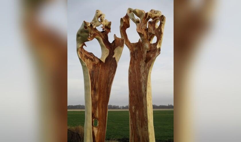 Jos Apeldoorn: een houtsculptuur van knotwilg.
