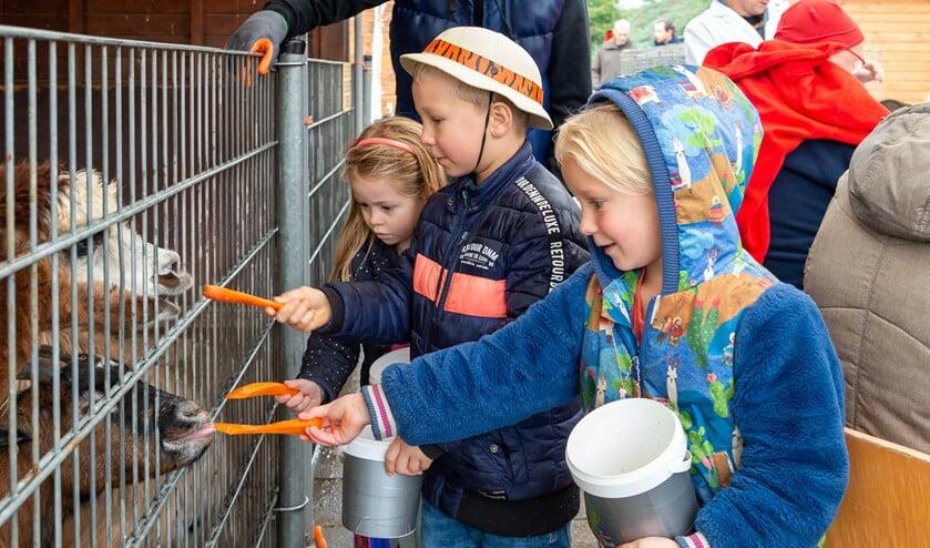 Kinderen geven dieren voer.