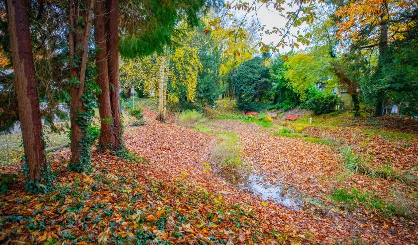 Het park waar vorig jaar de bomenkap - legaal of illegeaal - plaatsvond.