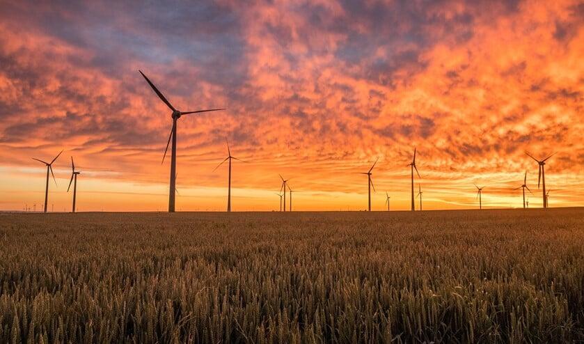 De natuurorganisatie gaat lobbyen bij de gemeenten om niet in te stemmen met windturbines en zonnevelden in haar gebied.