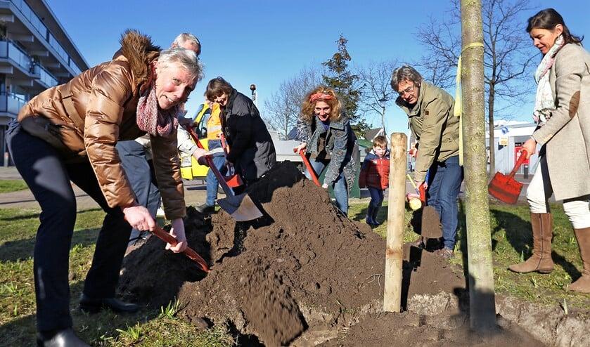 Wethouder Boersen (l) plant een 'bijenboom'.