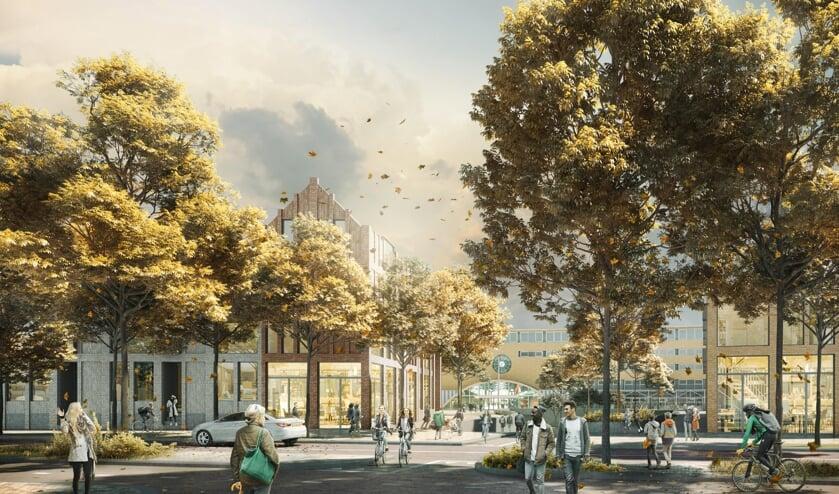 Visualistie Leeuwenstraat