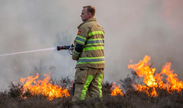 Heidebrand in Hilversum, eerder dit jaar.