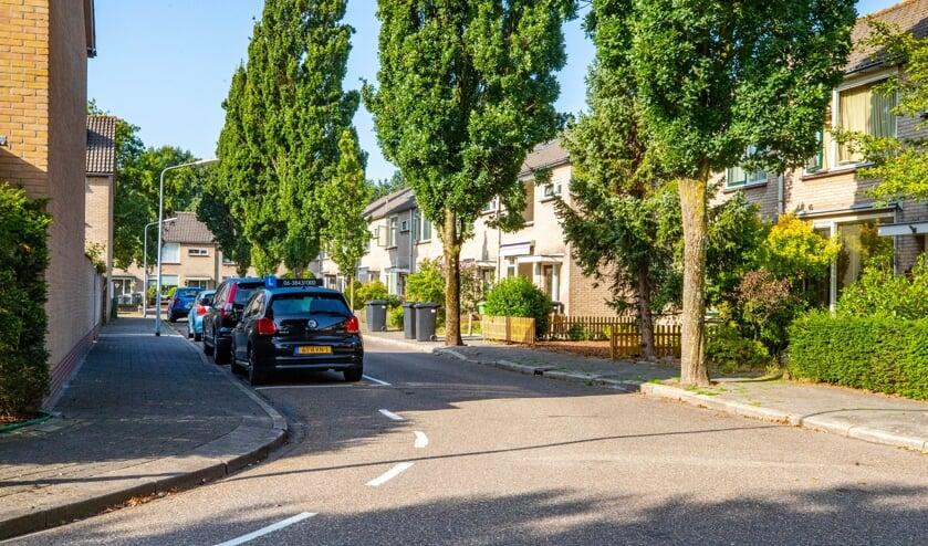 Het voorstel voor zestien extra parkeerplekken zorgt voor een verdeeld Calvijnhof.