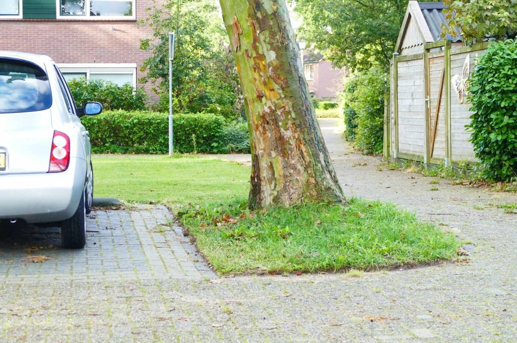 Waar is de wortelopdruk, vragen de bewoners zich af. Foto: Albert van der Linden © Enter Media