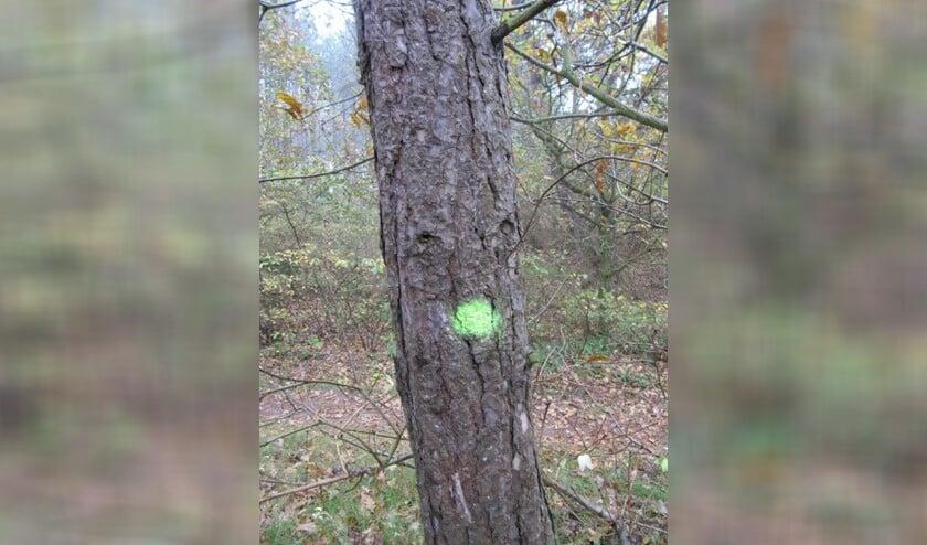Bomen die gesnoeid moeten worden of bomen waar een tak uit moet, krijgen een stip.