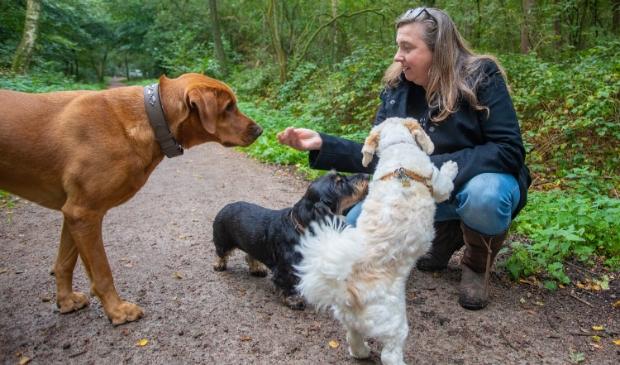 <p>Jessica Pijpers van VIP Dogs and Cats uit Bussum vreest voor de toekomst van de hondenuitlaatservices in het Gooi. </p>