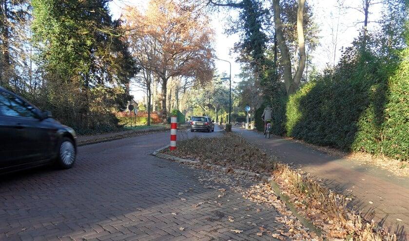 De Naarderweg in Blaricum.