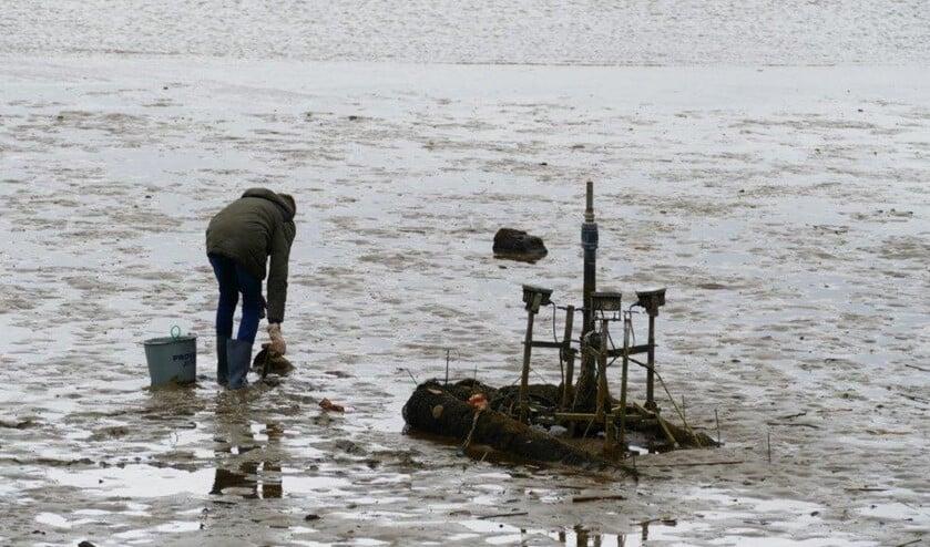 Bram redt vissen die op het droge zijn gekomen door de harde wind.