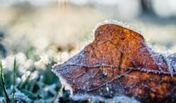 Zijn jouw tuinmeubelen klaar voor de winter? Deze tips helpen je!