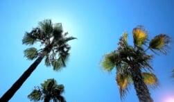 Van Bussum naar het zonnige Spanje