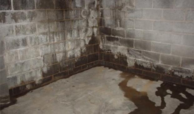 <p>Bij bewoners staan sommige delen van Kruipruimten en kelders onder water.</p>