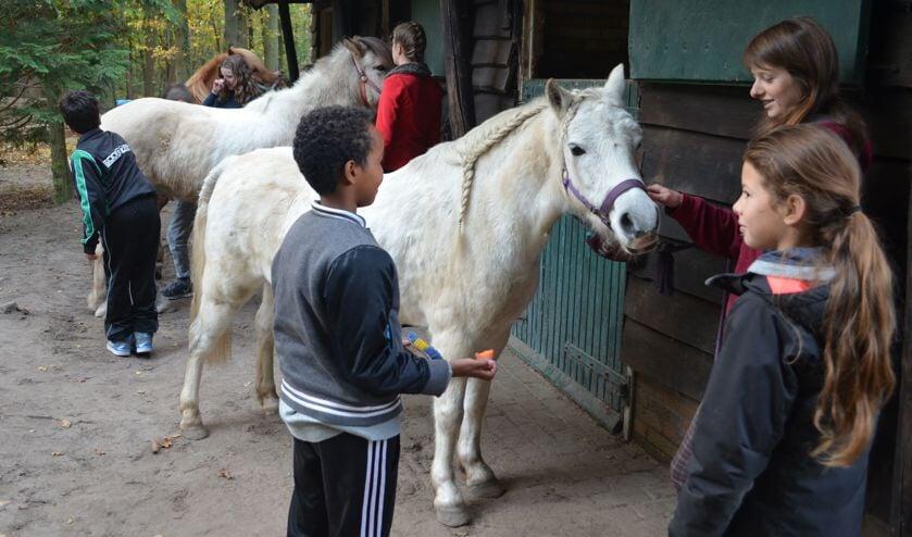 Kinderen van nieuwkomers en vluchtelingen genieten op De Vlierhof in Hollandsche Rading.
