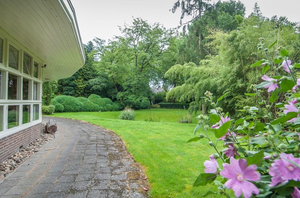 De tuin van de Werkplaats vormt een onlosmakelijk geheel met het gebouw. (foto: Hans Lebbe, OogopDeBilt.nl)  © De Vierklank
