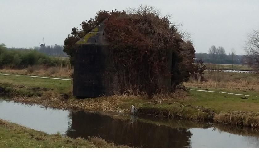 Een groepsschuilplaats in het recreatiegebied Ruigenhoek met op de achtergrond de molen Geesina.