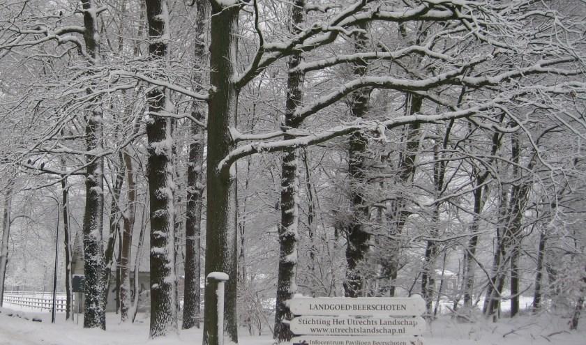 Beerschoten levert een betoverend plaatje op met sneeuw.