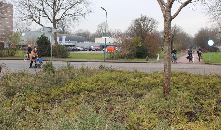 Het college ziet de woningbouwontwikkeling in relatie met de aansluiting van de Professor dr. T.M.C. Asserweg op de al aanwezige rotonde in de Biltse Rading.