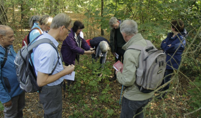 Grote belangstelling voor de paddenstoelenwandeling.