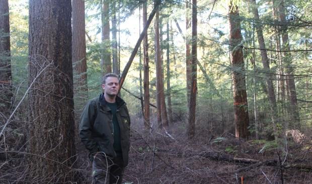De boom links van Martijn Bergen is een 'toekomstboom': een boom die nog lang behouden moet blijven omdat hij bijdraagt aan een vooropgesteld doel.   © De Vierklank