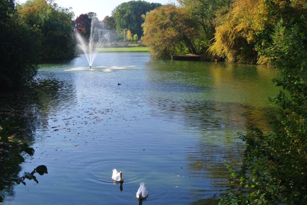 Ondanks de hoge temperaturen is het toch echt herfst in het Van Boetzelaerpark.  © De Vierklank
