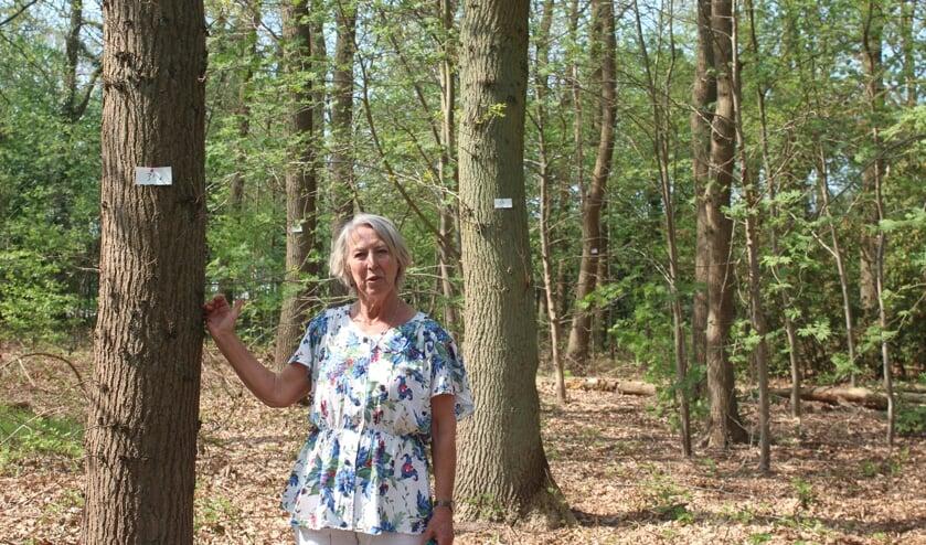 Tonneke Wilmink dacht dat zij goed opgelet had, maar zag tot haar grote schrik dat de bomen naast Schoonderwoerd gemerkt zijn.