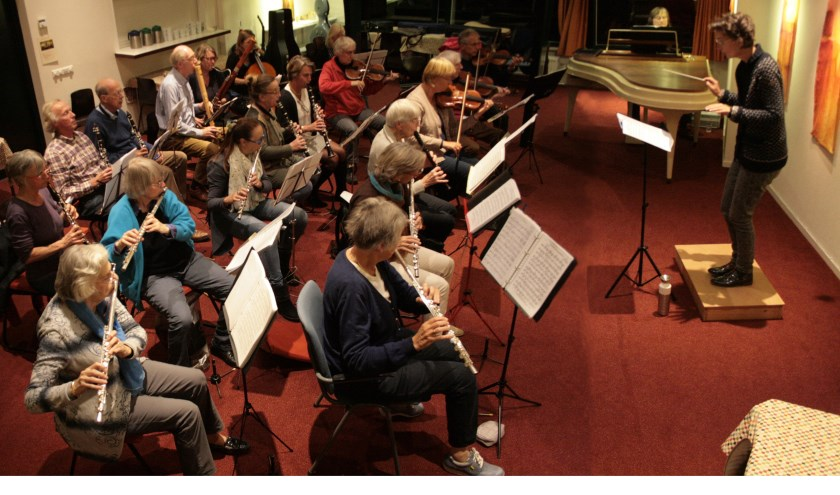 Met een paar jaar spelervaring kan je al met het orkest meespelen.