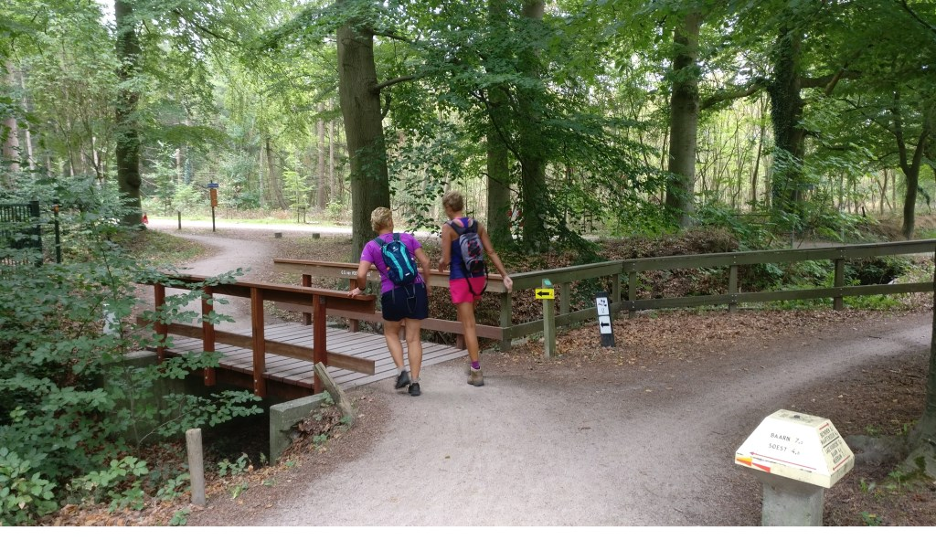 Ook wandelaars vinden hun weg over de fietsbrug in Lage Vuursche. [foto Henk van de Bunt]  © De Vierklank