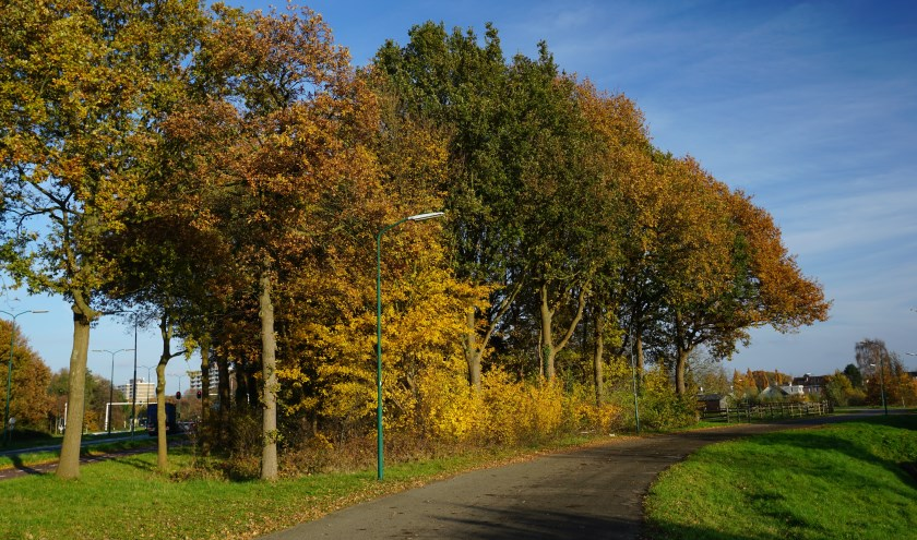 Volop herfst