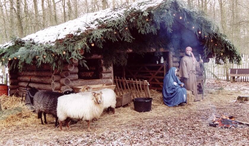 De levende kerststal bij Beerschoten.