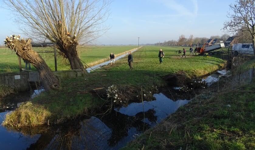 Leden van Het Groenekans Landschap zijn druk met het onderhoud van de wilgen.
