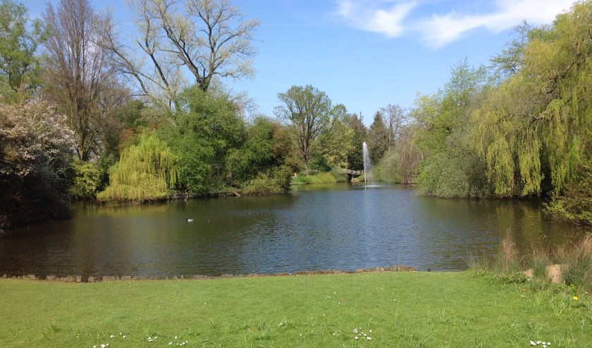 Bomen en een waterpartij in het Van Boetzelaerspark. (foto Jaap Milius)