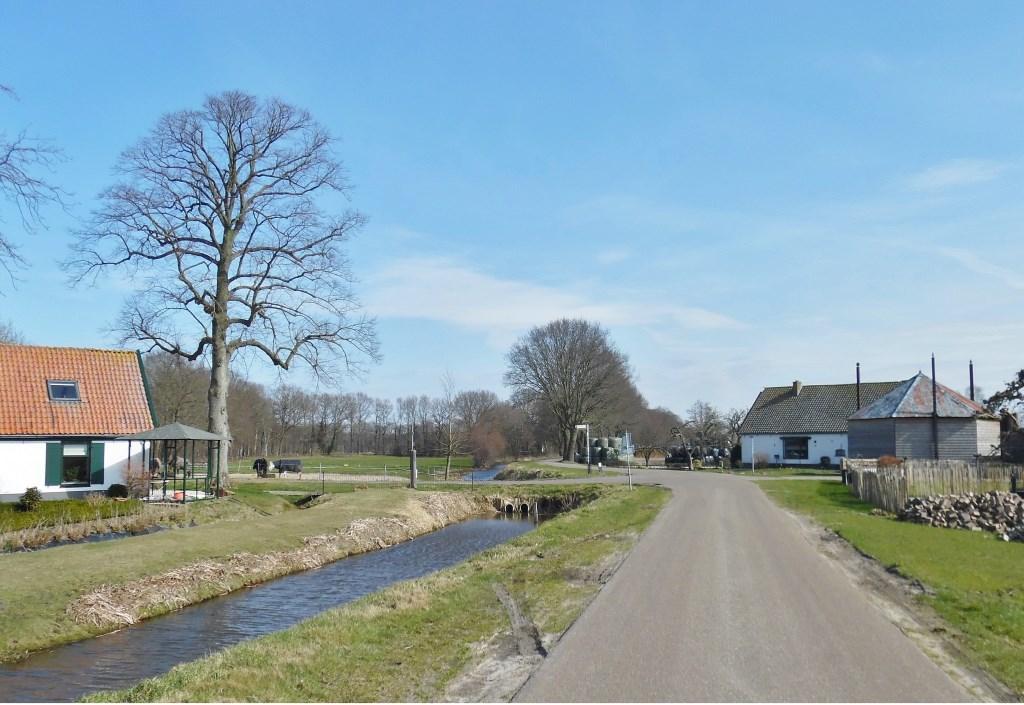 Deze foto volgt de grens over de Floris V weg naar het oosten, richting Hollandse Rading. Daar volgt de grens de abrupte overgang van het veenweidegebied naar bos.  © De Vierklank