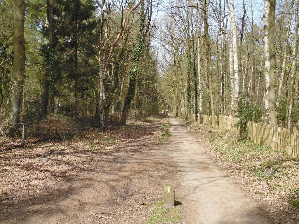 De grens loopt een kilometer langs de Vuurse Dreef om dan naar het noordoosten af te buigen en langs de Hollandse Sloot (deze foto) evenwijdig aan de A27 door te lopen tot op 250 meter afstand van de Hilversumse straatweg (N415). Vanuit dit punt in het bos loopt de grens nu pal zuidwaarts richting L  © De Vierklank
