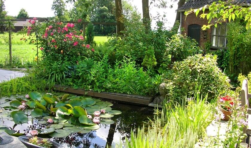 Neem een kijkje in de tuin van een ander.