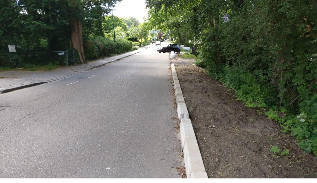 Hoge trottoirbanden en grote 'olifantskeien' maken de toegangsweg van Hollandsche Rading voor fietsers gevaarlijk.  © De Vierklank