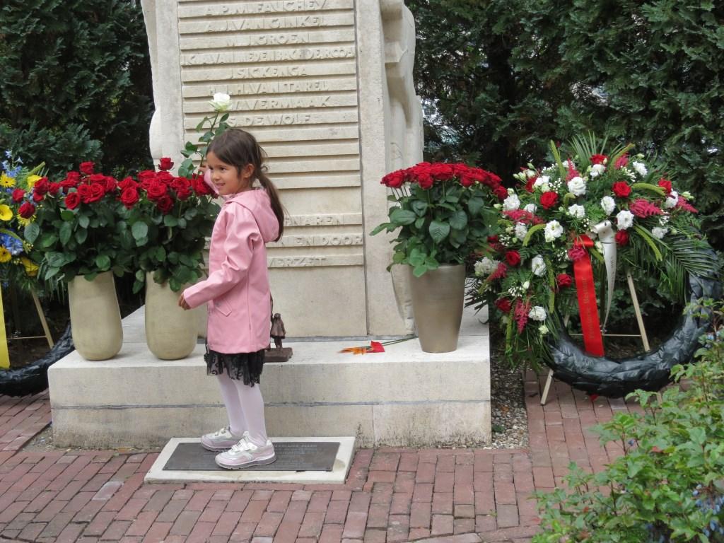 De vijfenhalfjarige Jasmijn van Dijk van de derde generatie plaatst een witte roos tussen de rode rozen.   © De Vierklank