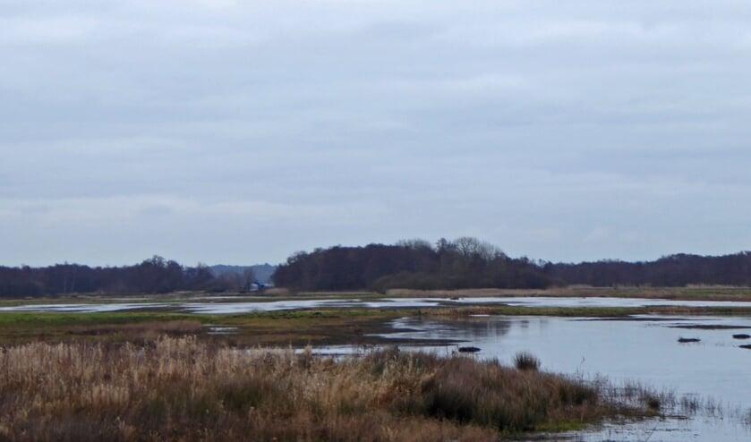 Weids uitzicht in het polderlandschap.