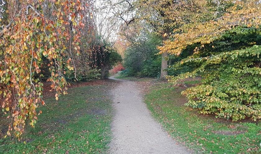Romantische kronkelpaden in een herfstachtig Van Boetzelaerpark