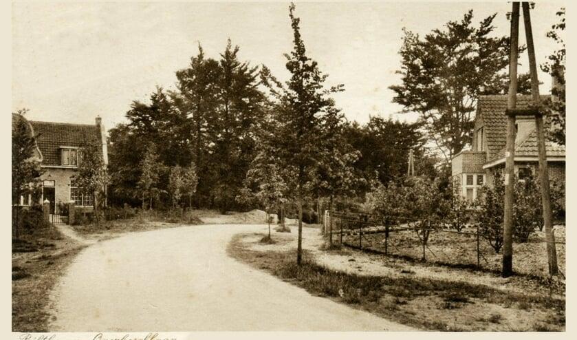 De Overboslaan, gezien vanaf de Soestdijkseweg Zuid.