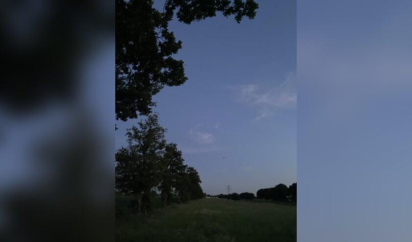 's Avonds worden de vleermuizen langs het Oostveensepad actief.