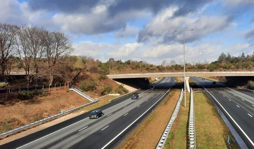 De natuurbrug over de A27 en spoorlijn Hilversum-Utrecht.