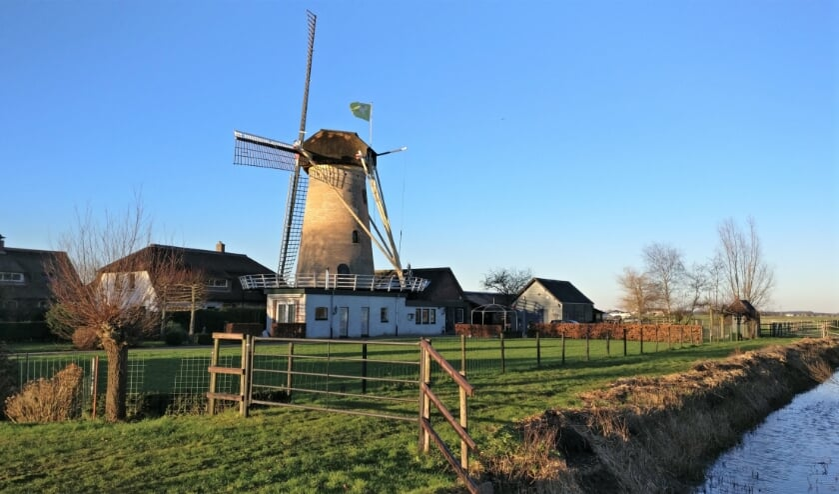 Over het bouwjaar van de Geesina bestaat wat onduidelijkheid. Bronnen spreken van 1843, maar op de kap van de molen staat het jaartal 1853. De romp is gemetseld van brons- tot roodkleurige ijsselsteentjes.