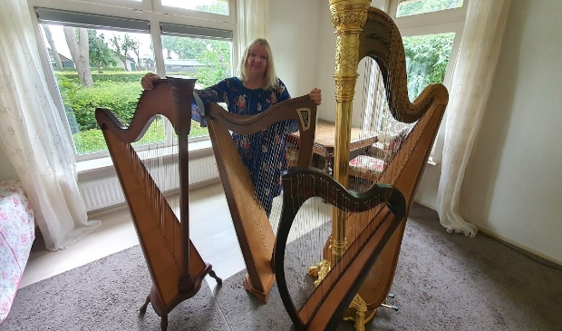 Regina Ederveen onder meer harples voor beginners en gevorderden.