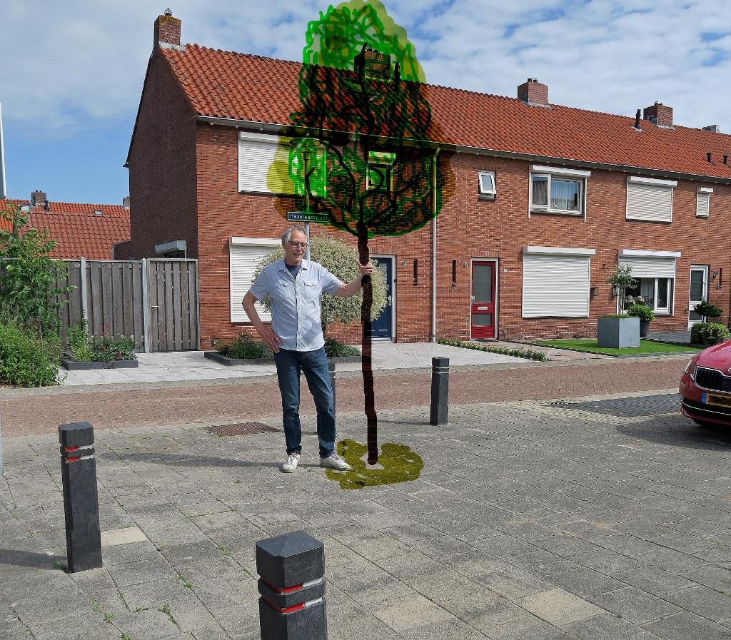 Er zijn nog veel mogelijkheden om ergens een boom te planten. Groentje © De Veluwe Koerier