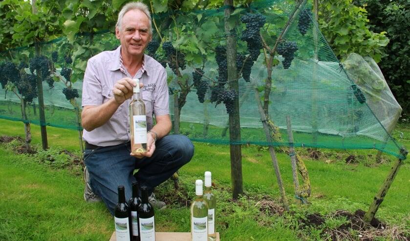 • Wijnmaker Bas Kon in zijn wijngaard in Goudriaan.