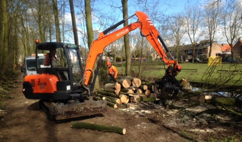• Er is de afgelopen periode volop gewerkt in het 'Haastrechtse Bos'.