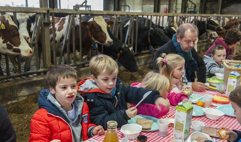 • Kinderen eten een broodje tussen de koeien. Ook Willem Schoof van de VGBK was aanwezig.