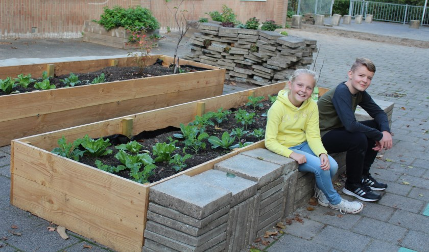 • Natuurplein van basisschool Het Schateiland in Lekkerkerk.