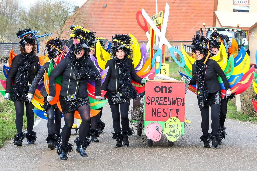 Carnavalsoptocht Spreeuwendurp Foto: Lya Cattel © Bommelerwaard